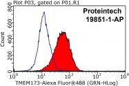 19851-1-AP - TMEM173 / STING