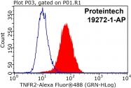 19272-1-AP - CD120b / TNFR2