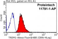 11791-1-AP - TREM1