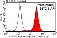 13472-1-AP - VASP