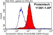 11361-1-AP - Dynactin subunit 2