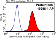 10298-1-AP - Lamin-A/C (LMNA)