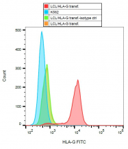 SM1592APC - HLA class I  alpha G / HLA-G
