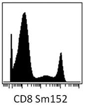 SM3102PP - CD8