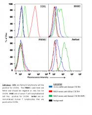 ARP30799_P050 - CD184 / CXCR4
