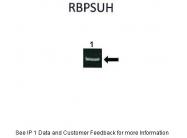 ARP31121_P050 - RBP-J kappa / RBPJ