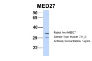 ARP33743_P050 - MED27