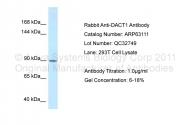 ARP63111_P050 - DACT1