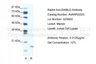AVARP02023_T100 - DIABLO / SMAC
