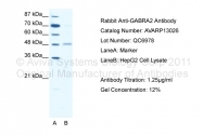 AVARP13026_T100 - GABRA2