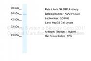 AVARP13032_P050 - GABRD