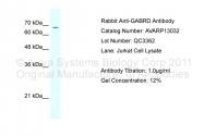 AVARP13032_T100 - GABRD