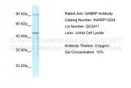 AVARP13034_P050 - GABRP