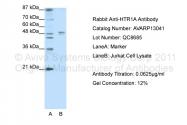 AVARP13041_P050 - Serotonin receptor 1A (HTR1A)