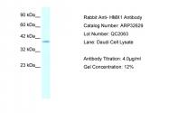 ARP32629_P050 - HMX1