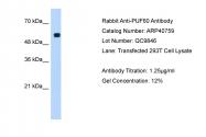 ARP40759_T100 - PUF60 / SIAHBP1