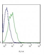 bs-0342R - CD61 / ITGB3