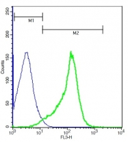 bs-10027R - CD335 / NKp46