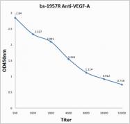 bs-1957R - VEGF-A