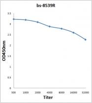 bs-8539R - Luciferase