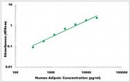 CEK1006 - Human Adipsin ELISA Kit