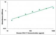 CEK1033 - Human CCL11 ELISA Kit