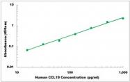 CEK1039 - Human CCL19 ELISA Kit