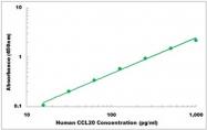 CEK1040 - Human CCL20 ELISA Kit