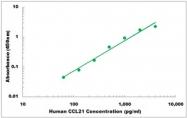 CEK1041 - Human CCL21 ELISA Kit