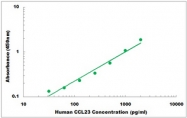 CEK1043 - Human CCL23 ELISA Kit