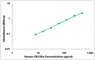 CEK1058 - Human CD120a ELISA Kit