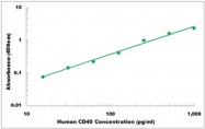 CEK1101 - Human CD40 ELISA Kit