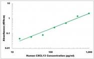 CEK1126 - Human CXCL13 ELISA Kit