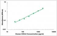 CEK1130 - Human CXCL6 ELISA Kit