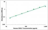 CEK1131 - Human CXCL7 ELISA Kit