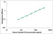 CEK1134 - Human Cystatin B ELISA Kit