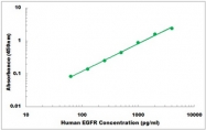 CEK1142 - Human EGFR ELISA Kit