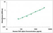 CEK1148 - Human FAP alpha ELISA Kit