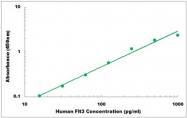 CEK1161 - Human Flt3 Ligand ELISA Kit