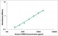 CEK1167 - Human FURIN ELISA Kit
