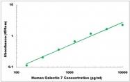 CEK1171 - Human Galectin 7 ELISA Kit