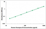 CEK1183 - Human Granzyme B ELISA Kit