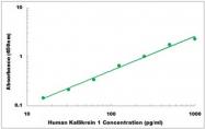CEK1246 - Human Kallikrein 1 ELISA Kit