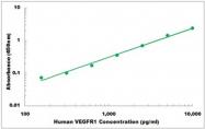 CEK1362 - Human VEGFR1 ELISA Kit
