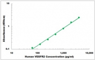 CEK1363 - Human VEGFR2 ELISA Kit