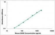 CEK1468 - Mouse GAS6 ELISA Kit