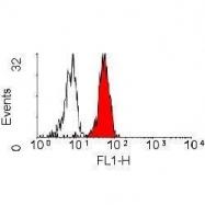 GTX11152 - CD282 / TLR2