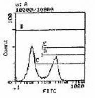 GTX19623 - CD45 / LCA
