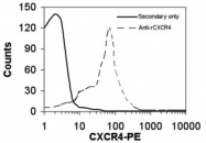 GTX27199 - CD184 / CXCR4