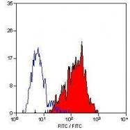 GTX39381 - CD46 / MCP